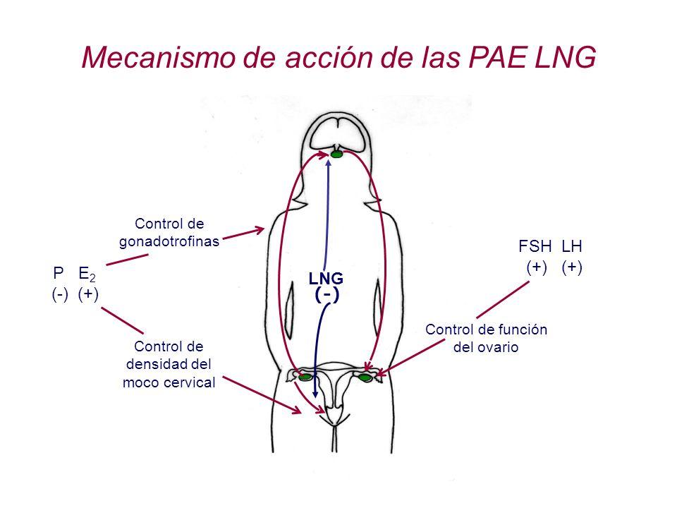 Mecanismo de acción de las PAE LNG