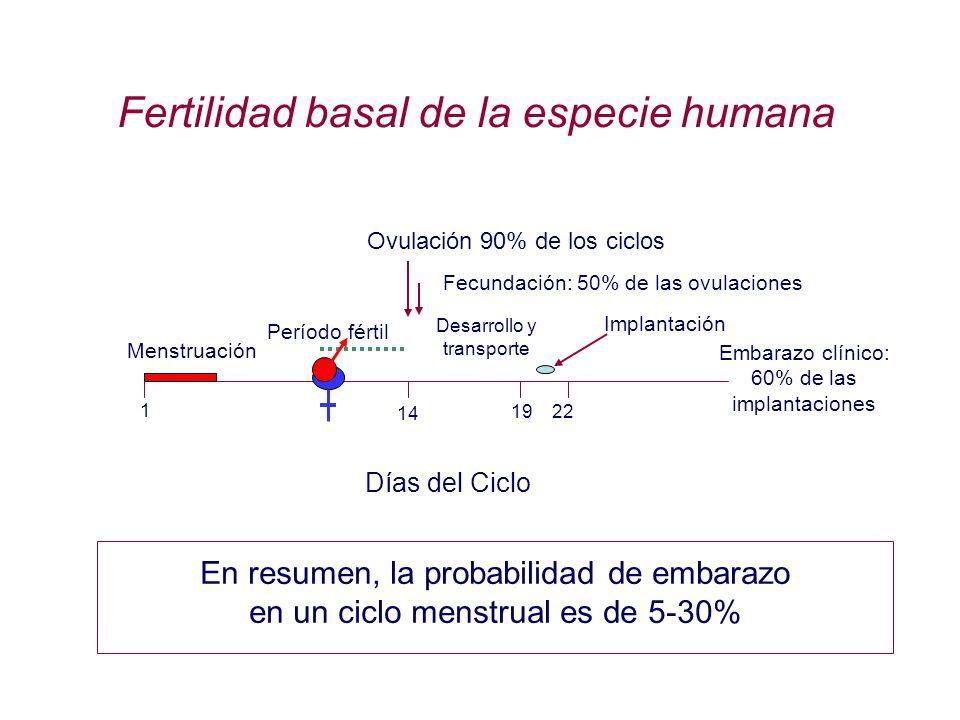 Fertilidad basal de la especie humana