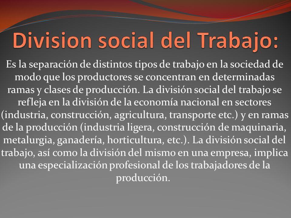 Division social del Trabajo: