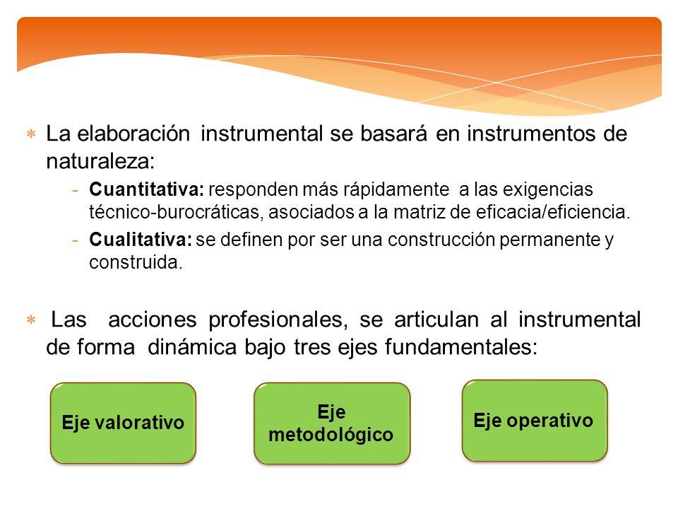 La elaboración instrumental se basará en instrumentos de naturaleza: