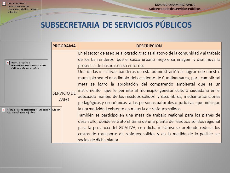 MAURICIO RAMIREZ AVILA Subsecretario de Servicios Públicos