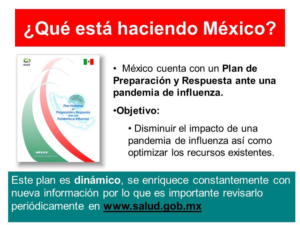 ¿Qué está haciendo México