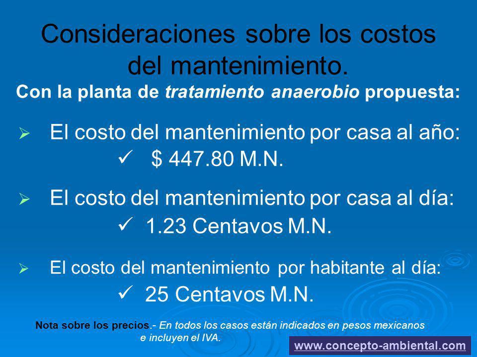 Consideraciones sobre los costos del mantenimiento.