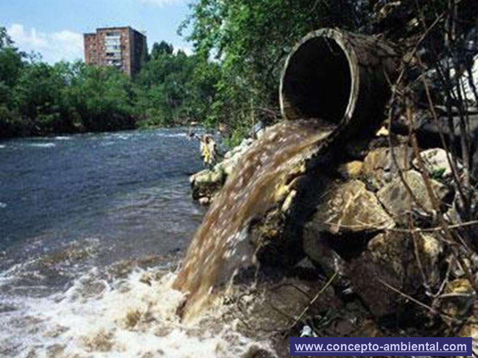 3 www.concepto-ambiental.com