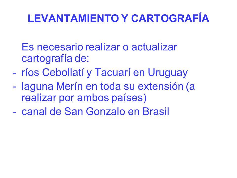 LEVANTAMIENTO Y CARTOGRAFÍA