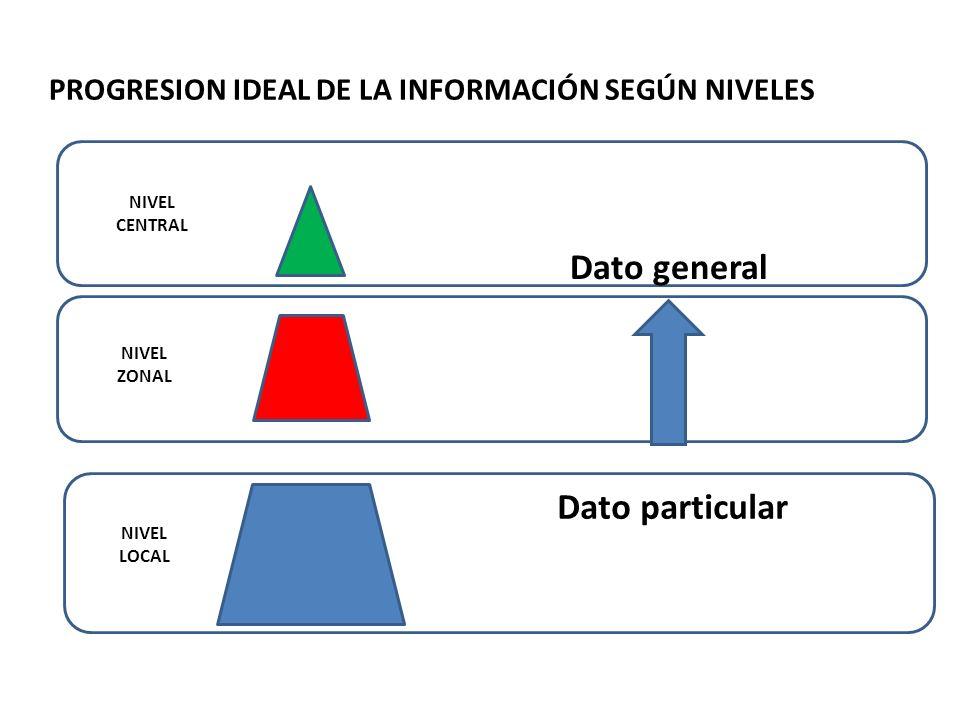 PROGRESION IDEAL DE LA INFORMACIÓN SEGÚN NIVELES