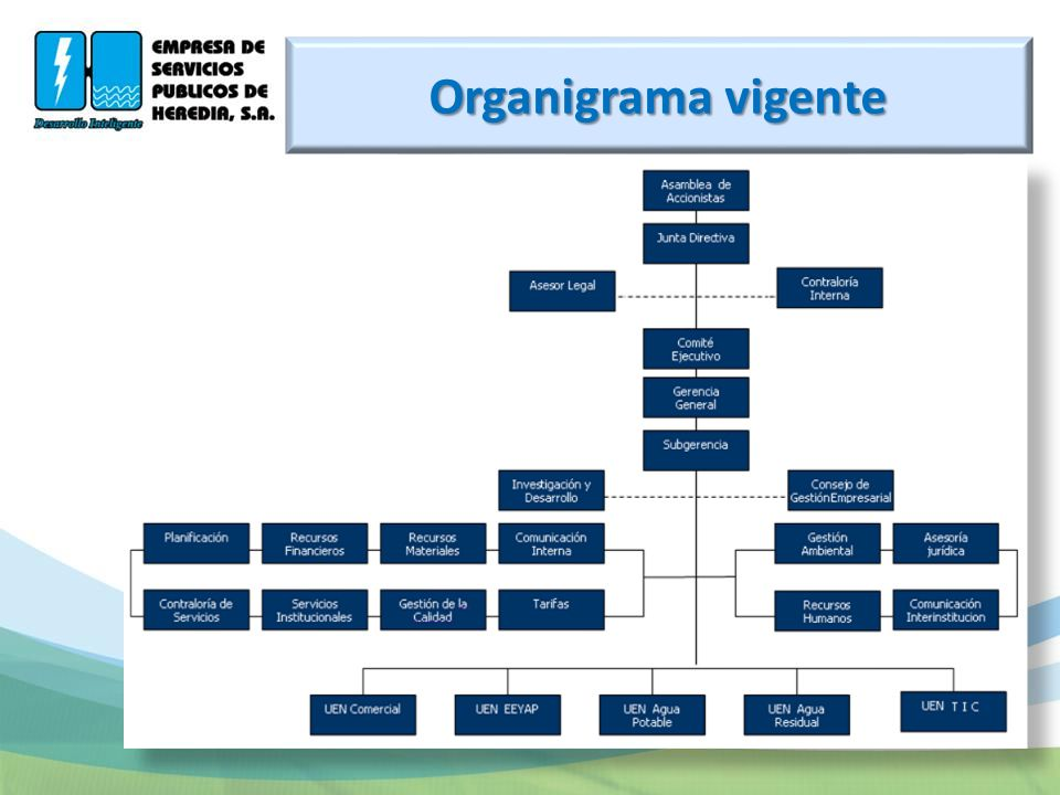 Organigrama vigente