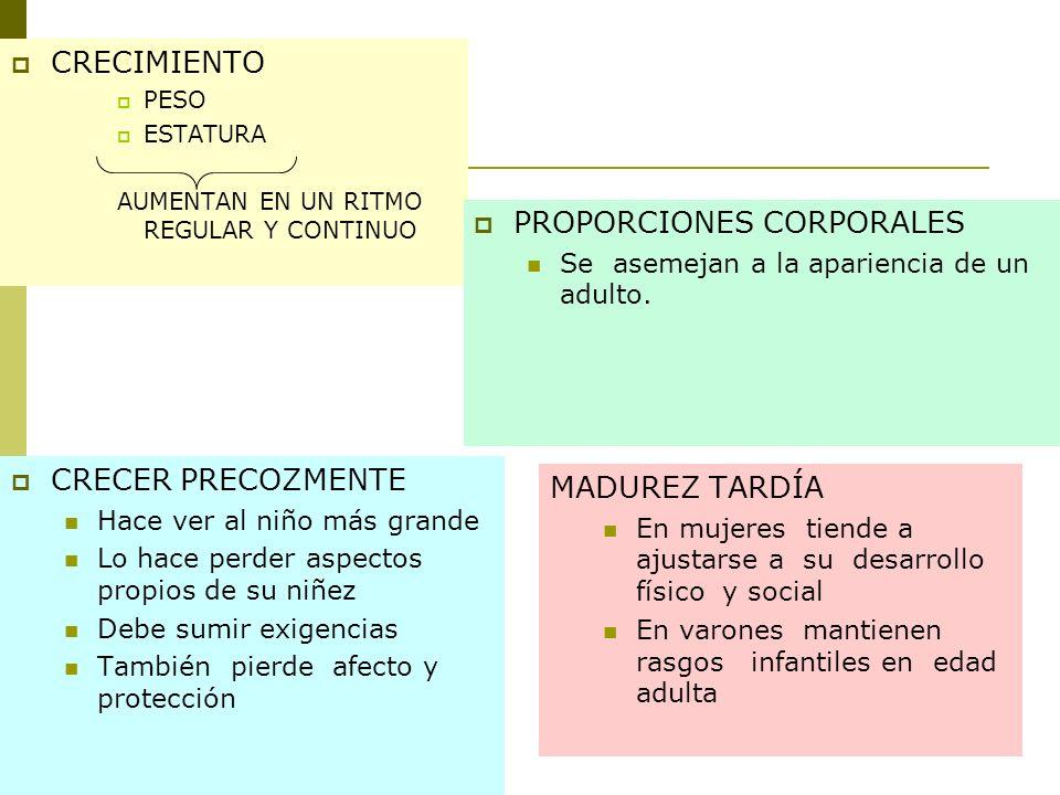 PROPORCIONES CORPORALES