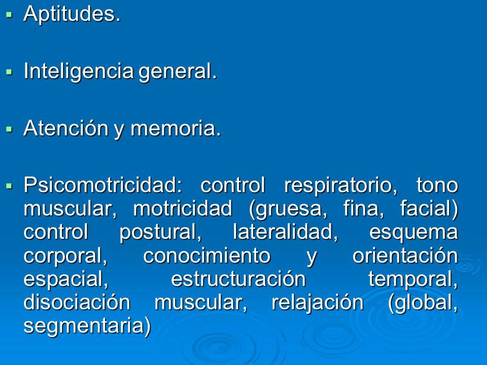 Aptitudes. Inteligencia general. Atención y memoria.