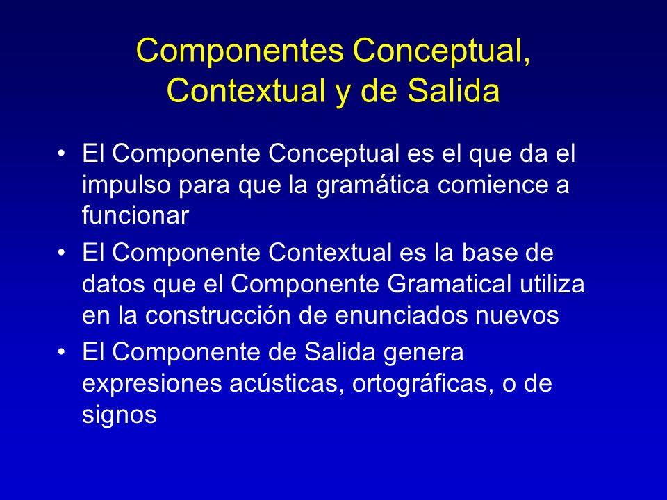 Componentes Conceptual, Contextual y de Salida