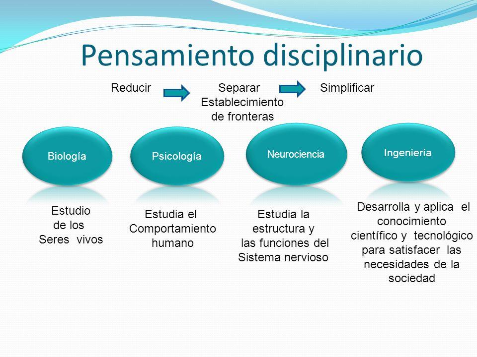 Pensamiento disciplinario