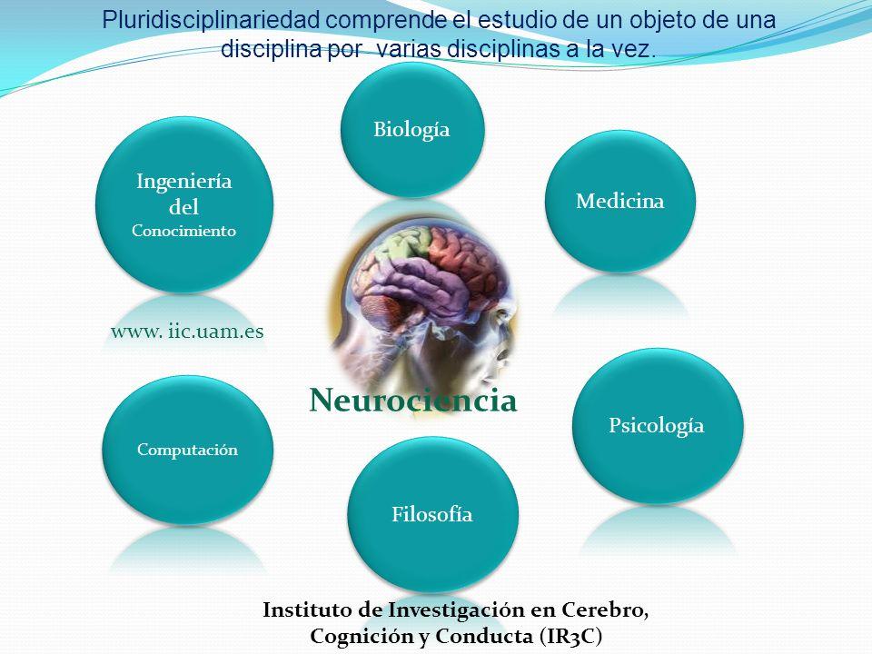 Instituto de Investigación en Cerebro, Cognición y Conducta (IR3C)