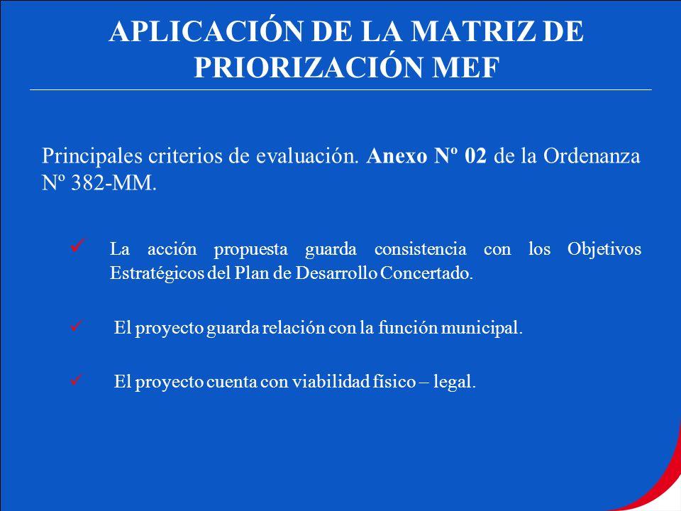 APLICACIÓN DE LA MATRIZ DE PRIORIZACIÓN MEF