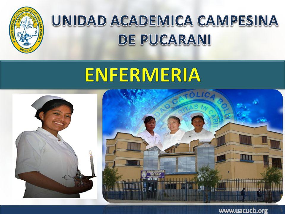 UNIDAD ACADEMICA CAMPESINA DE PUCARANI