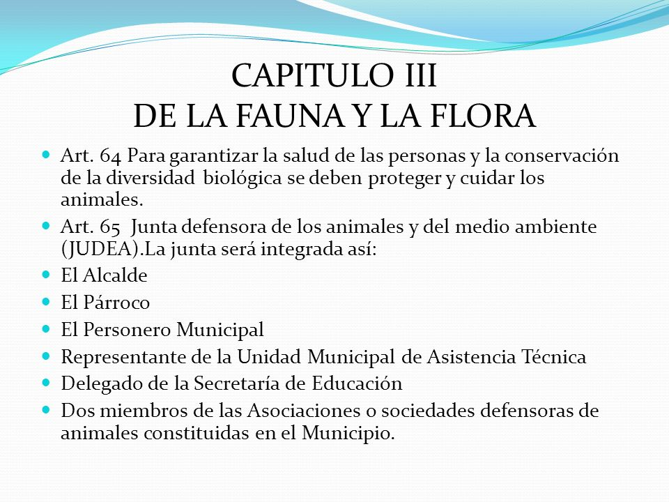 CAPITULO III DE LA FAUNA Y LA FLORA