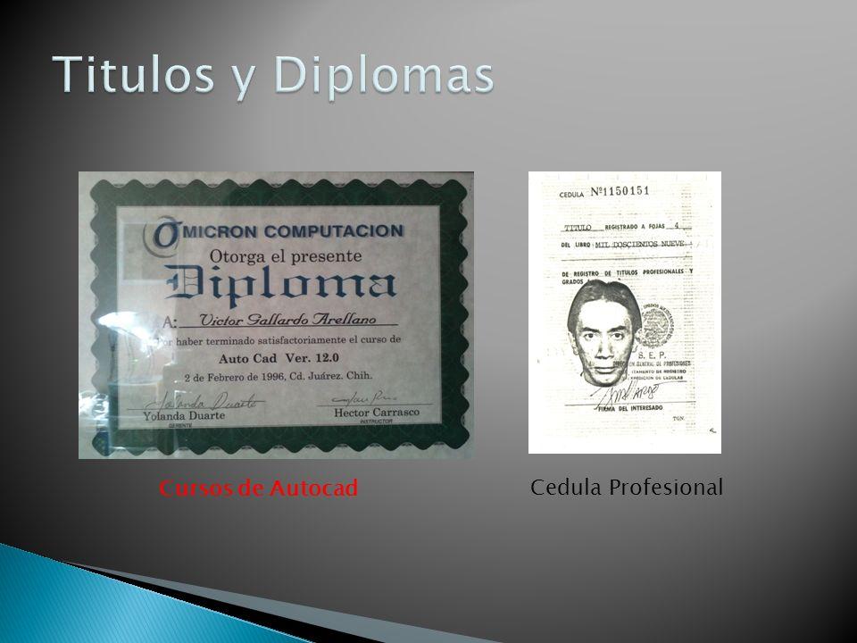 Titulos y Diplomas Cursos de Autocad Cedula Profesional