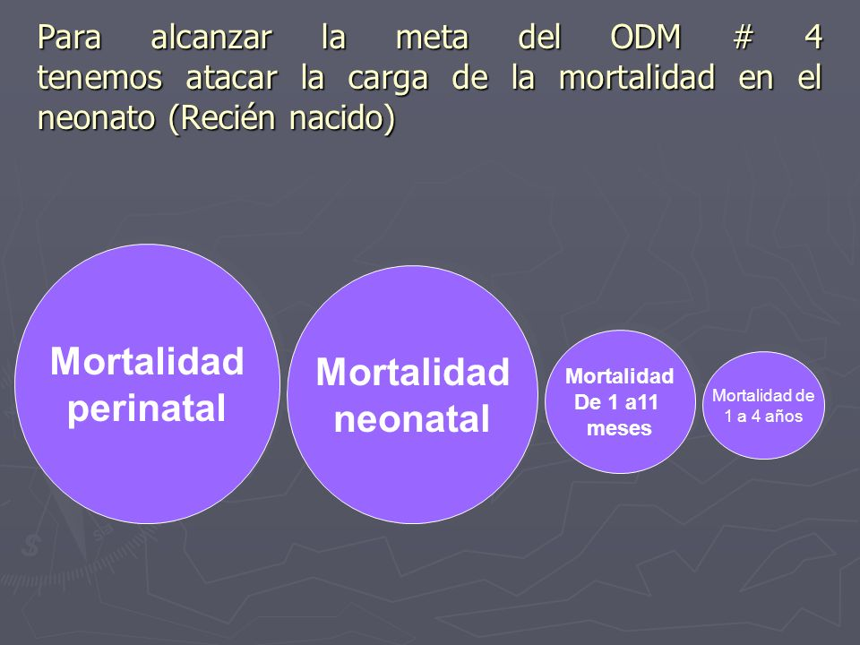 Mortalidad perinatal Mortalidad neonatal
