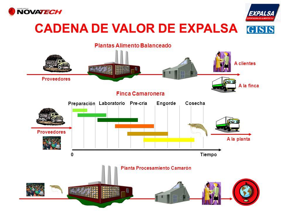 CADENA DE VALOR DE EXPALSA