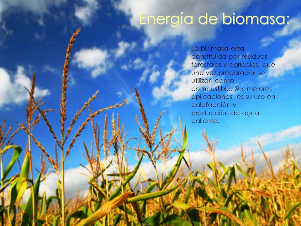 Energía de biomasa: