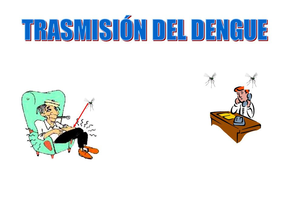 TRASMISIÓN DEL DENGUE