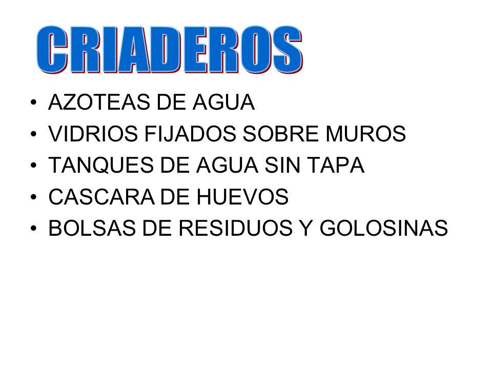 CRIADEROS AZOTEAS DE AGUA VIDRIOS FIJADOS SOBRE MUROS