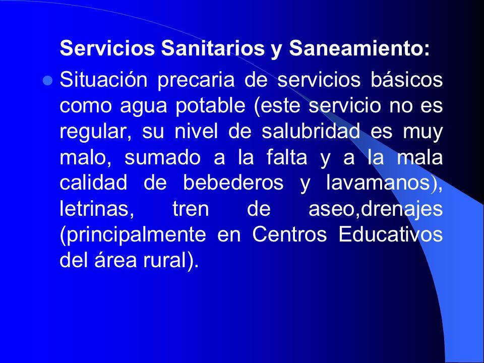 Servicios Sanitarios y Saneamiento: