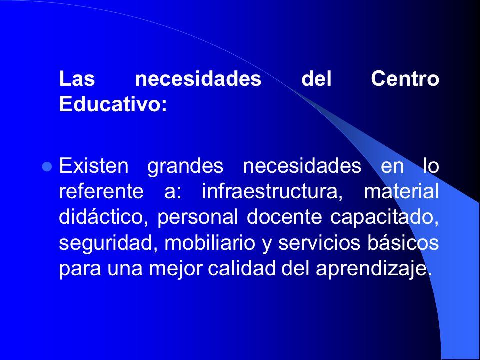 Las necesidades del Centro Educativo: