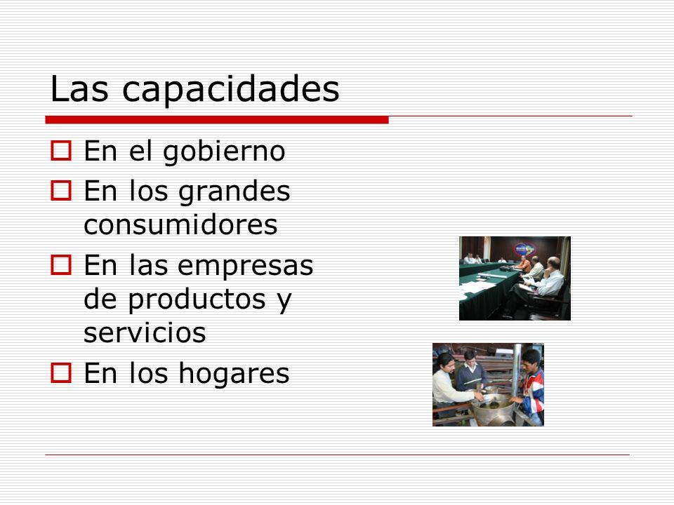 Las capacidades En el gobierno En los grandes consumidores