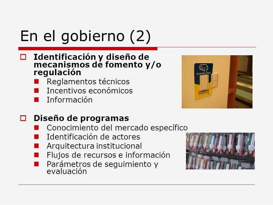 En el gobierno (2) Identificación y diseño de mecanismos de fomento y/o regulación. Reglamentos técnicos.