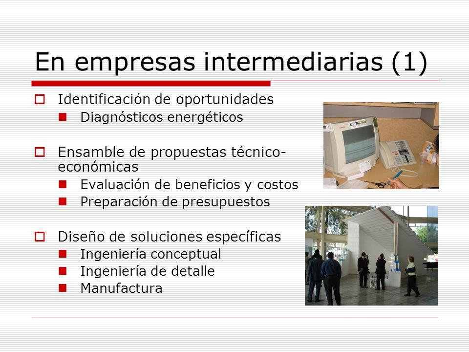 En empresas intermediarias (1)