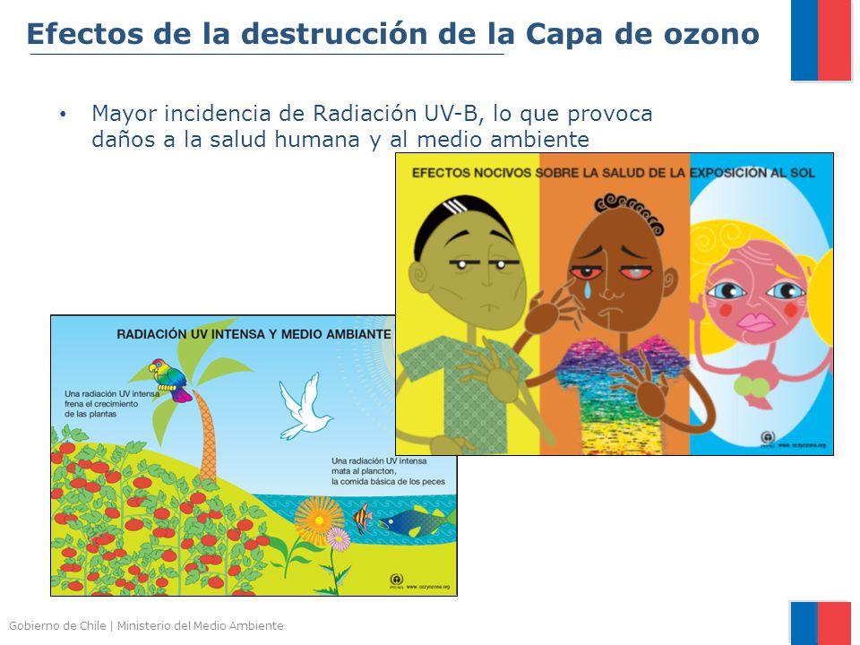 Efectos de la destrucción de la Capa de ozono