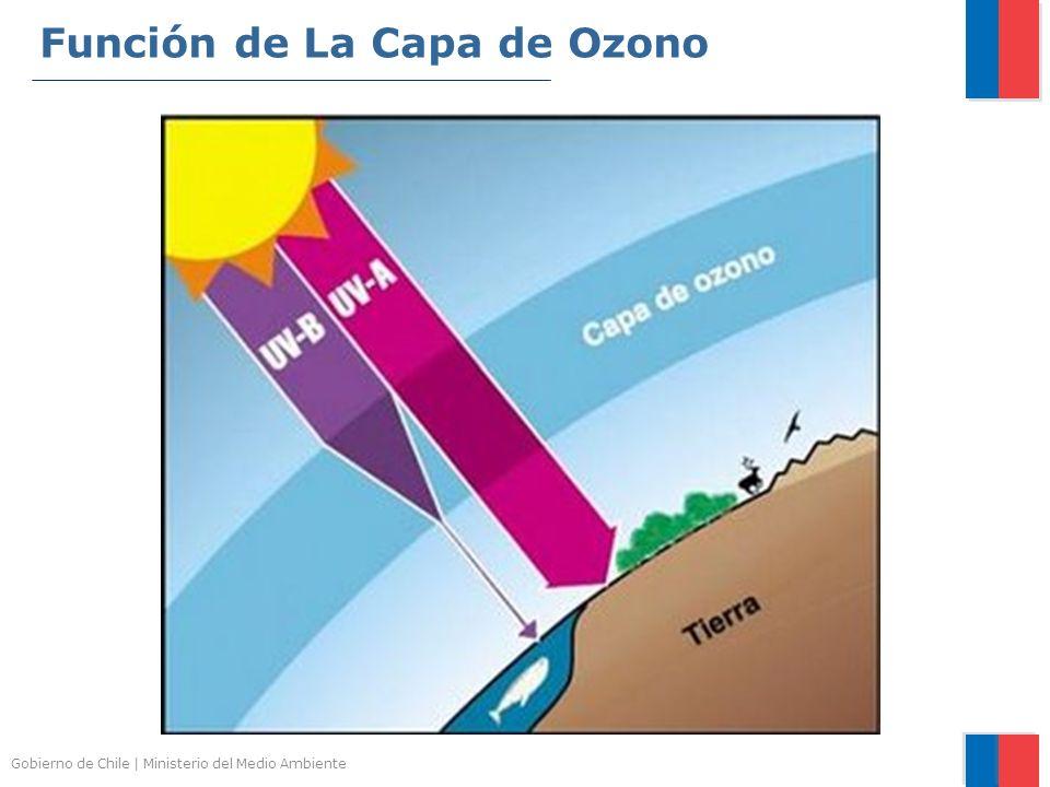 Función de La Capa de Ozono