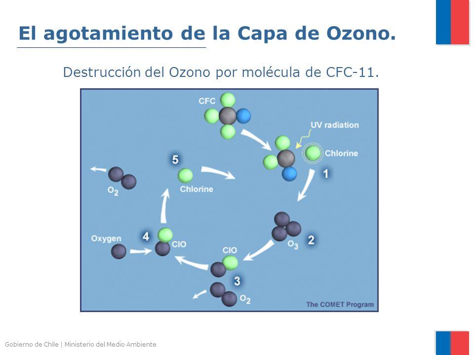 El agotamiento de la Capa de Ozono.