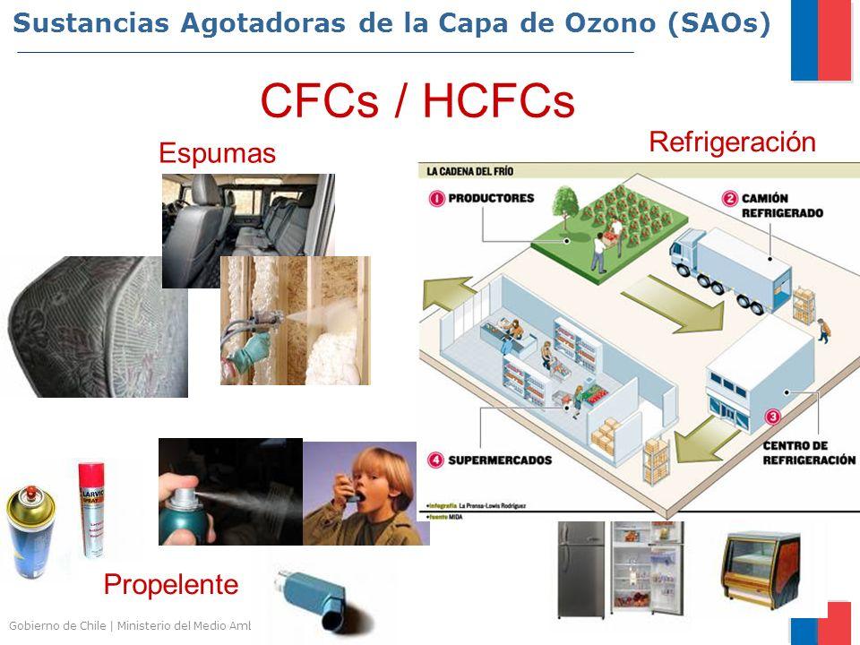 Sustancias Agotadoras de la Capa de Ozono (SAOs)