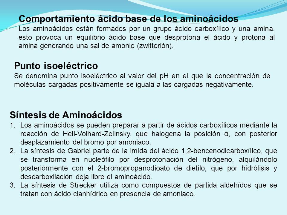 Comportamiento ácido base de los aminoácidos