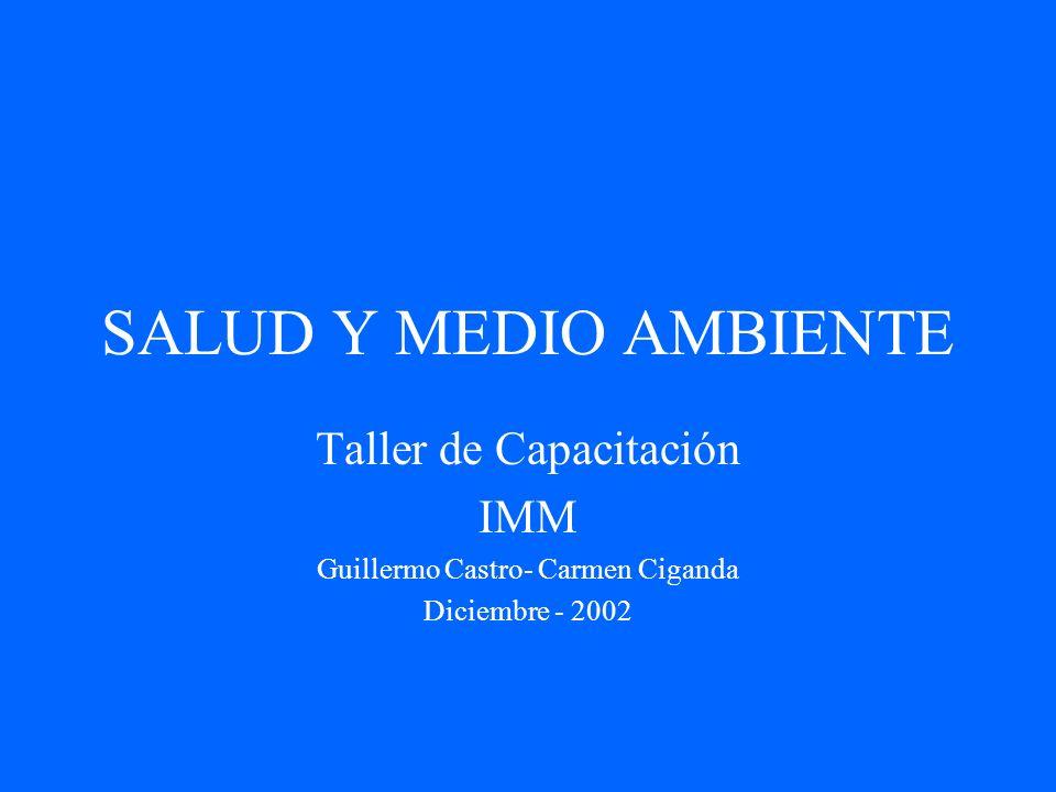 SALUD Y MEDIO AMBIENTE Taller de Capacitación IMM