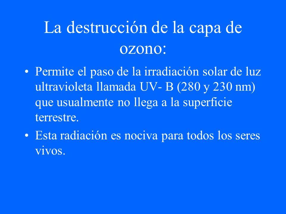 La destrucción de la capa de ozono: