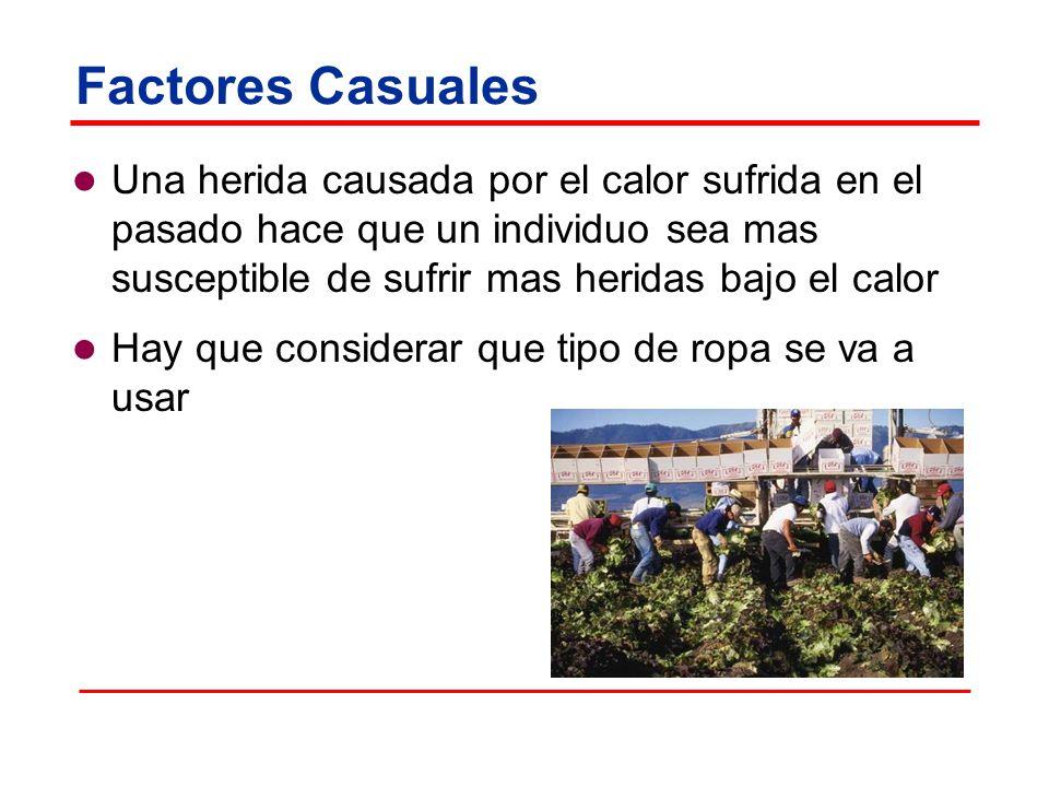 Factores Casuales Una herida causada por el calor sufrida en el pasado hace que un individuo sea mas susceptible de sufrir mas heridas bajo el calor.
