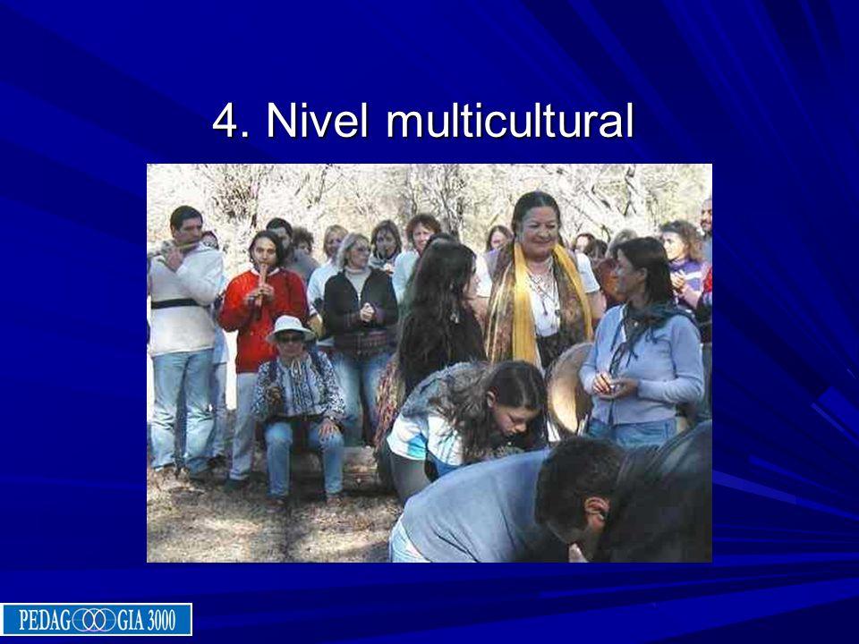 4. Nivel multicultural