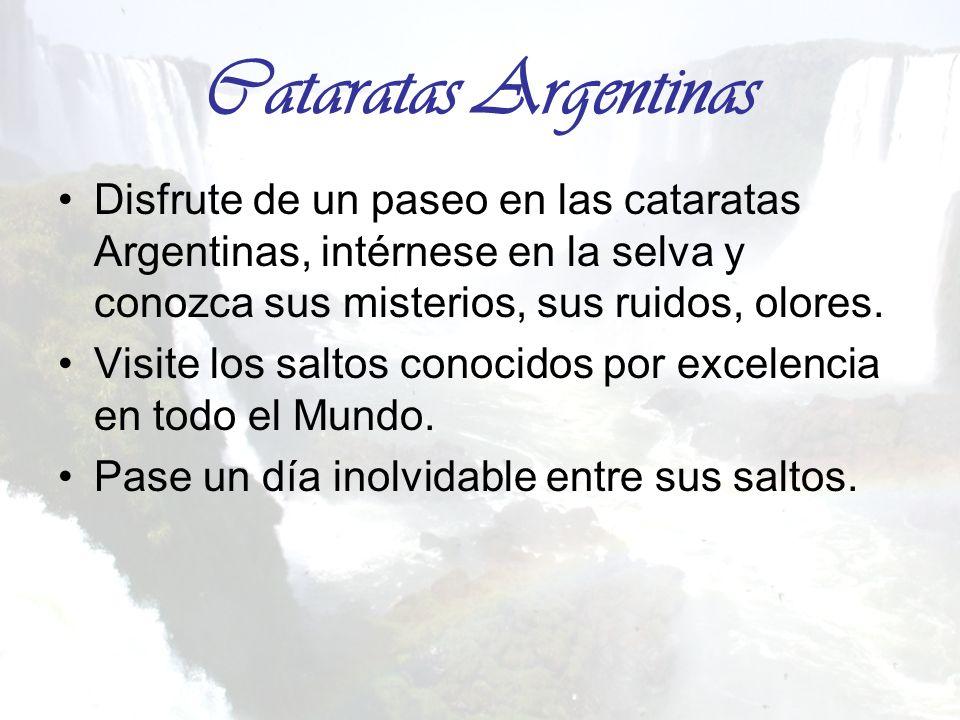 Cataratas Argentinas Disfrute de un paseo en las cataratas Argentinas, intérnese en la selva y conozca sus misterios, sus ruidos, olores.