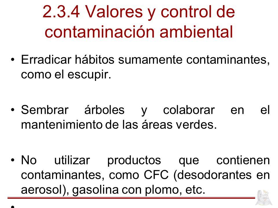 2.3.4 Valores y control de contaminación ambiental