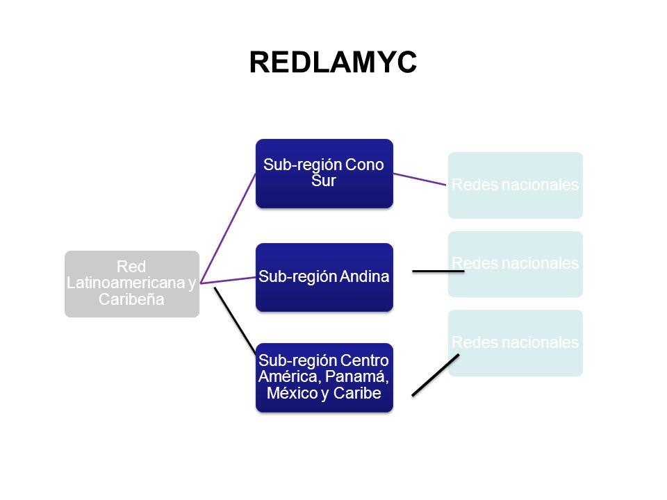 REDLAMYC Red Latinoamericana y Caribeña Sub-región Cono Sur