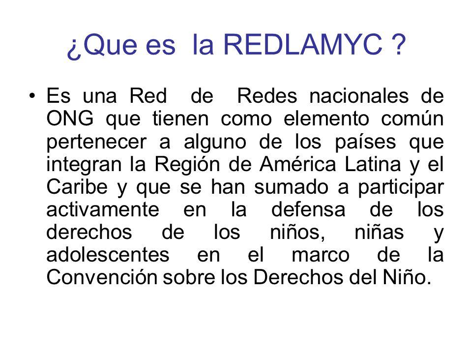 ¿Que es la REDLAMYC