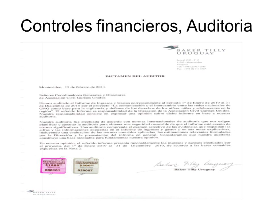 Controles financieros, Auditoria
