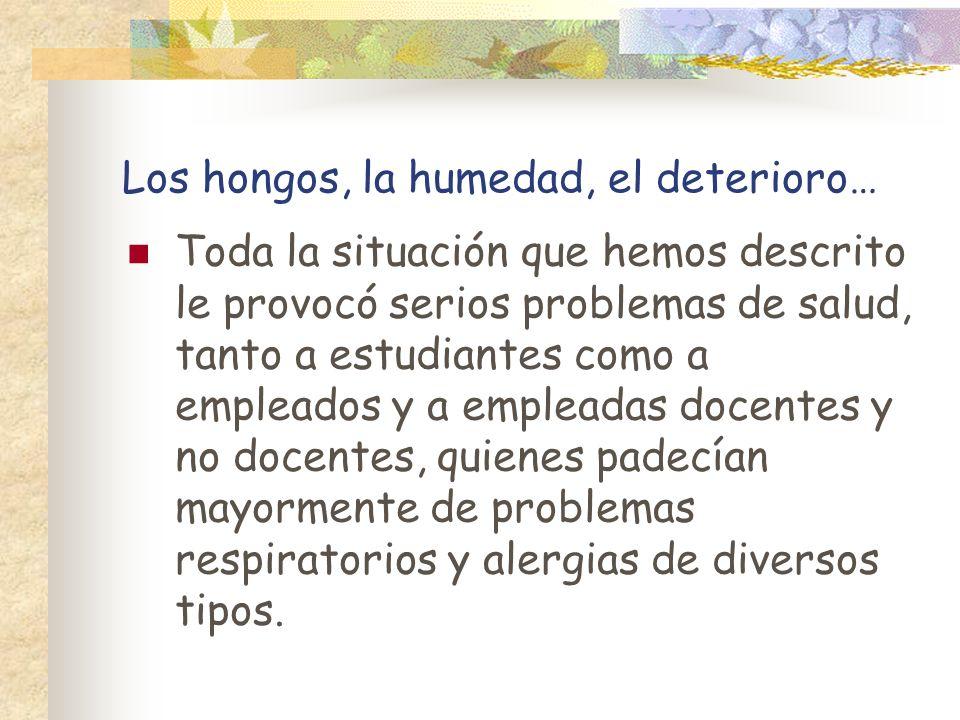 Los hongos, la humedad, el deterioro…