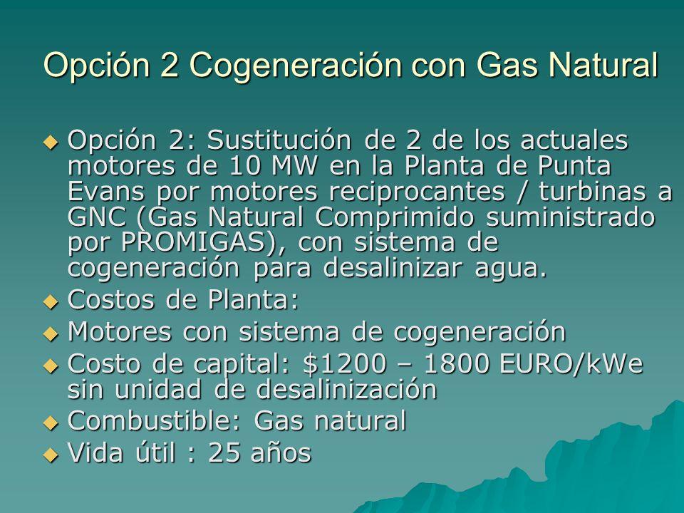 Opción 2 Cogeneración con Gas Natural