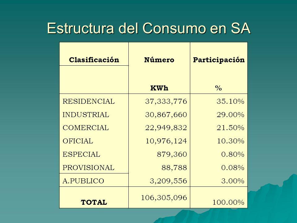Estructura del Consumo en SA