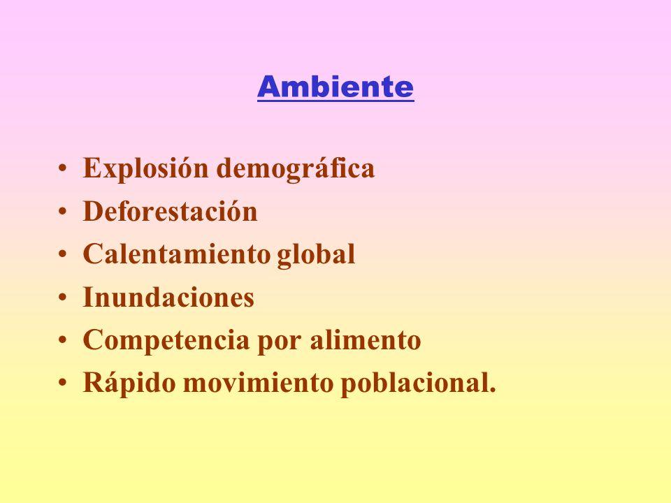 Ambiente Explosión demográfica. Deforestación. Calentamiento global. Inundaciones. Competencia por alimento.