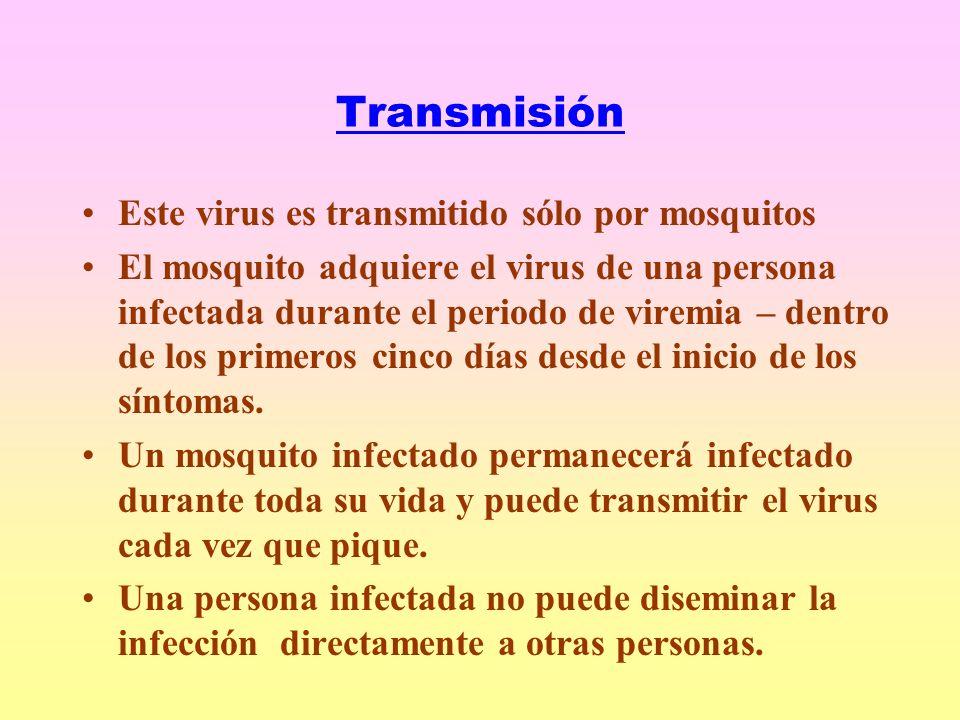 Transmisión Este virus es transmitido sólo por mosquitos