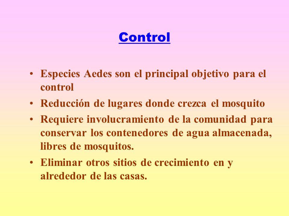 Control Especies Aedes son el principal objetivo para el control